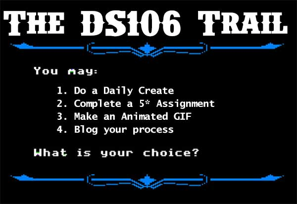 ds1016-trail-choices
