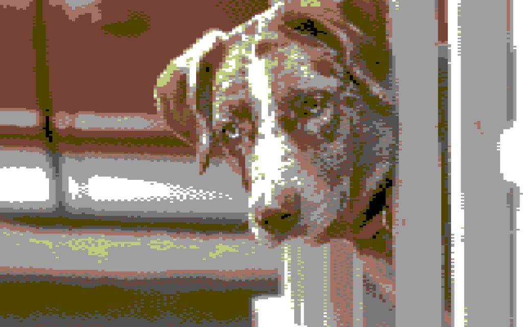 @Felixadog is a Commodore 64 screen character