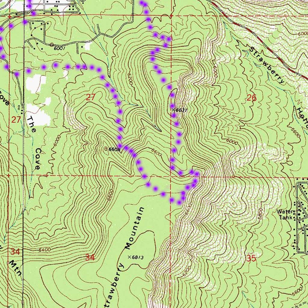 My best guess for a hike up a mountain in July 3, 2016.