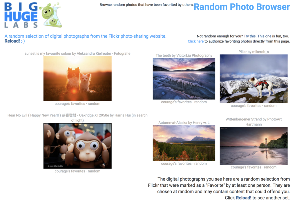 thumbnail pictures of dogs, mountains, seascape and toy monkey